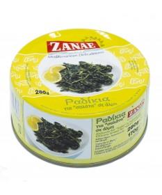 3218 ZANAE  Radikia Zichorie in Salzwasser 280gr